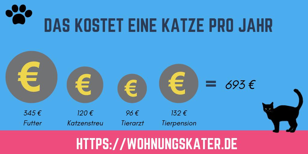 Die Kosten einer Katze pro Jahr - Infografik