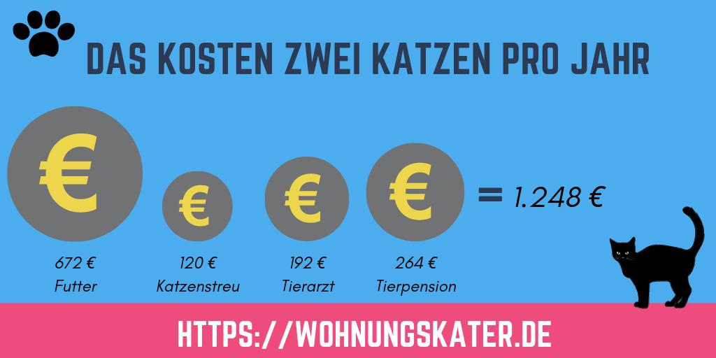 Infografik: Die Kosten von zwei Katzen pro Jahr