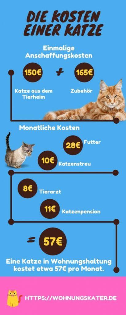 Monatliche Kosten einer Katze