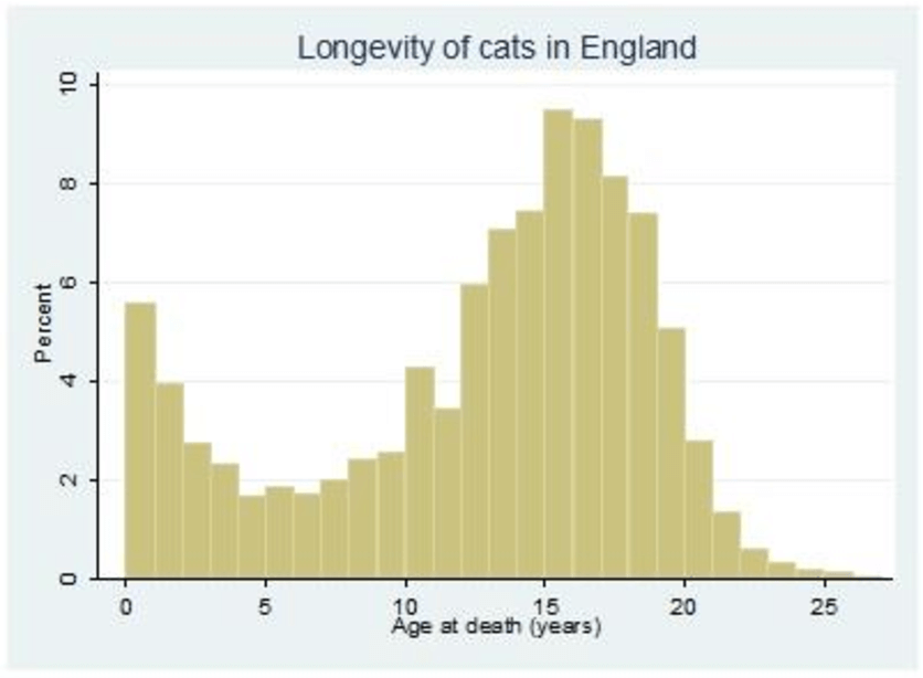 Statistik Katzenalter