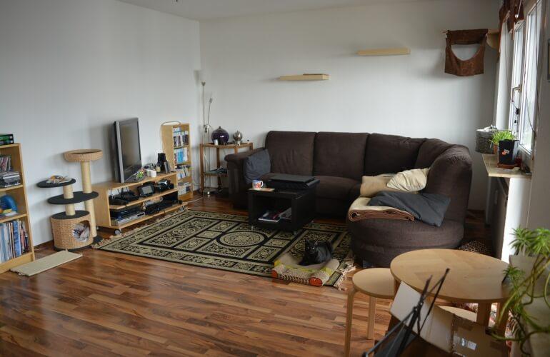 Das Wohnzimmer mit Katzenwand.