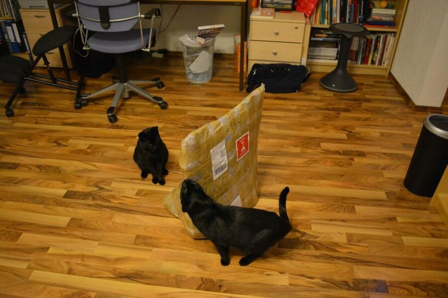 Eingepackte Hängematte für Katzen