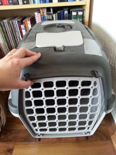 Katzentransportbox mit Riss